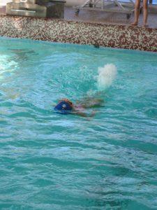 Les CP et CE1 à la piscine